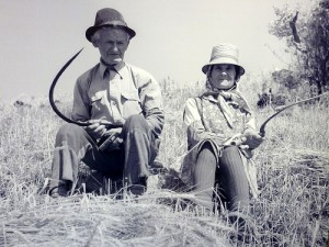Old-Farmers
